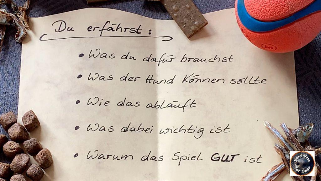 Suchspiel-fuer-Hunde-Schnueffelspiel-Anleitung-Tutorial