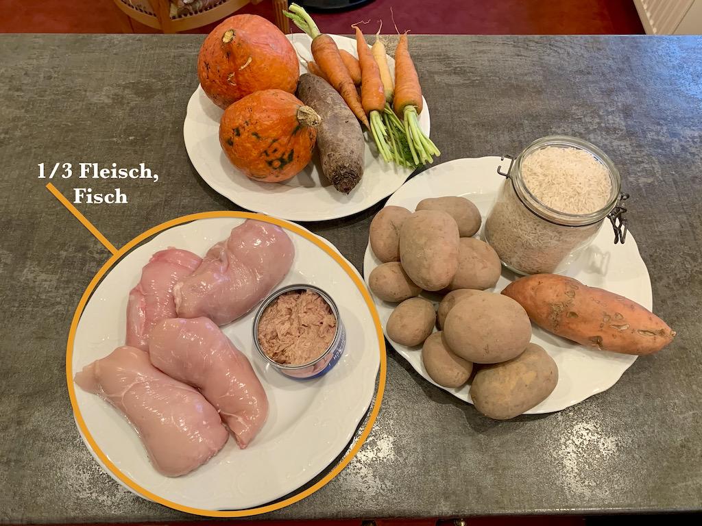 Hundefutter-Rezept-Fleisch-Fisch