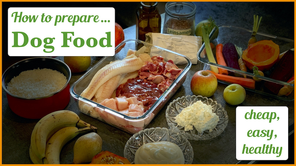 how-to-prepare-dog-food
